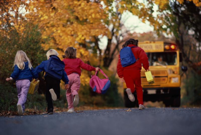 Back to School: Memoir or Autobiography?